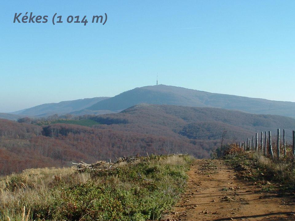 Kékes (1 014 m)