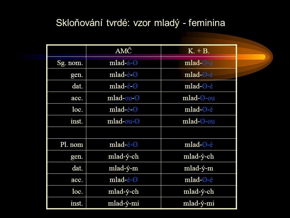 Skloňování tvrdé: vzor mladý - feminina