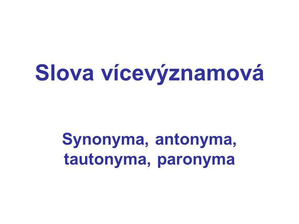 Synonyma, antonyma, tautonyma, paronyma