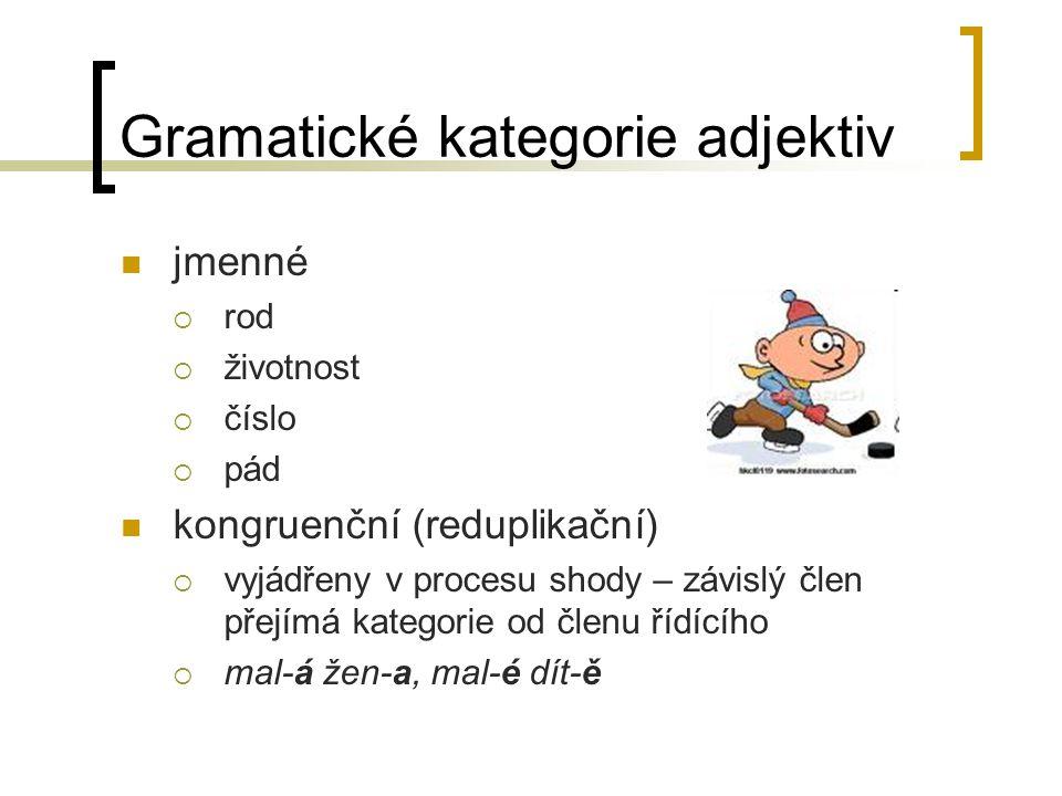 Gramatické kategorie adjektiv