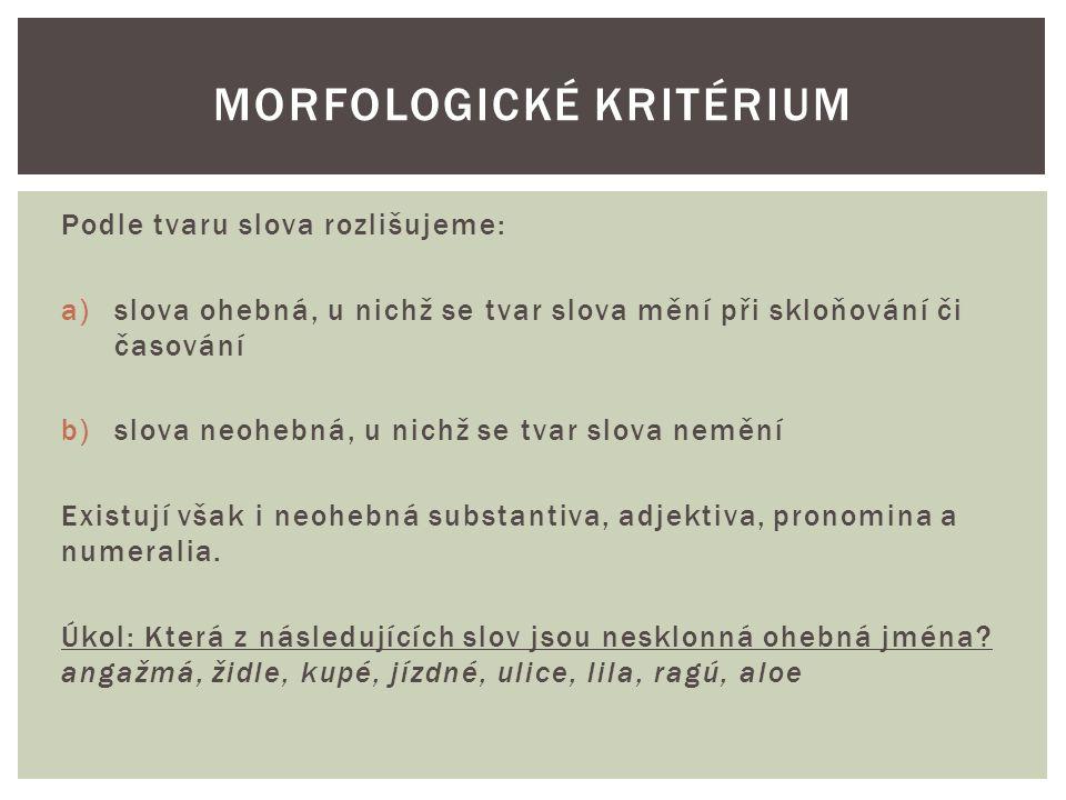 Morfologické kritérium