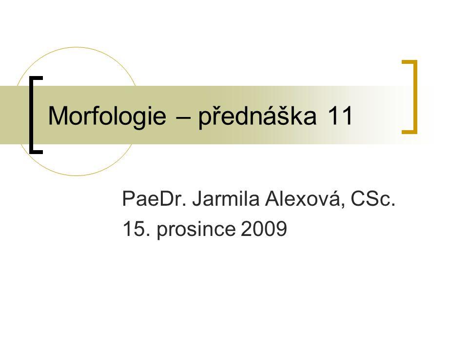 Morfologie – přednáška 11