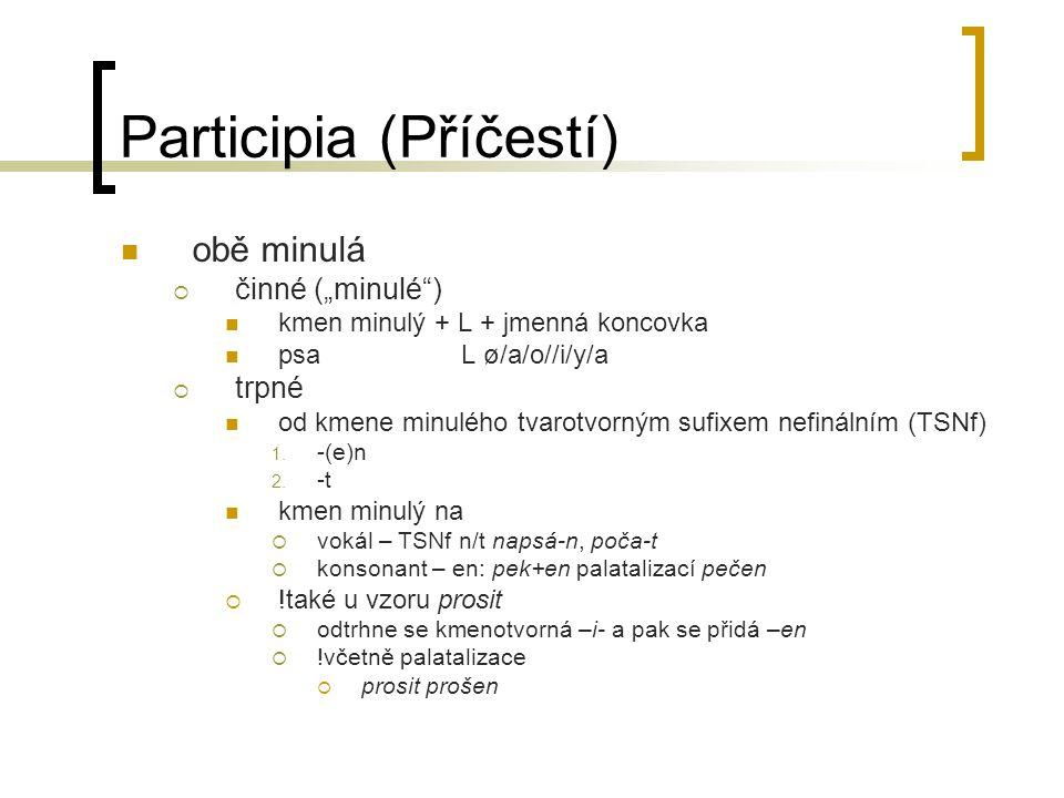 Participia (Příčestí)