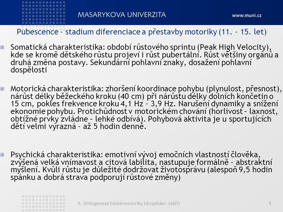 Pubescence - stadium diferenciace a přestavby motoriky (11. - 15. let)