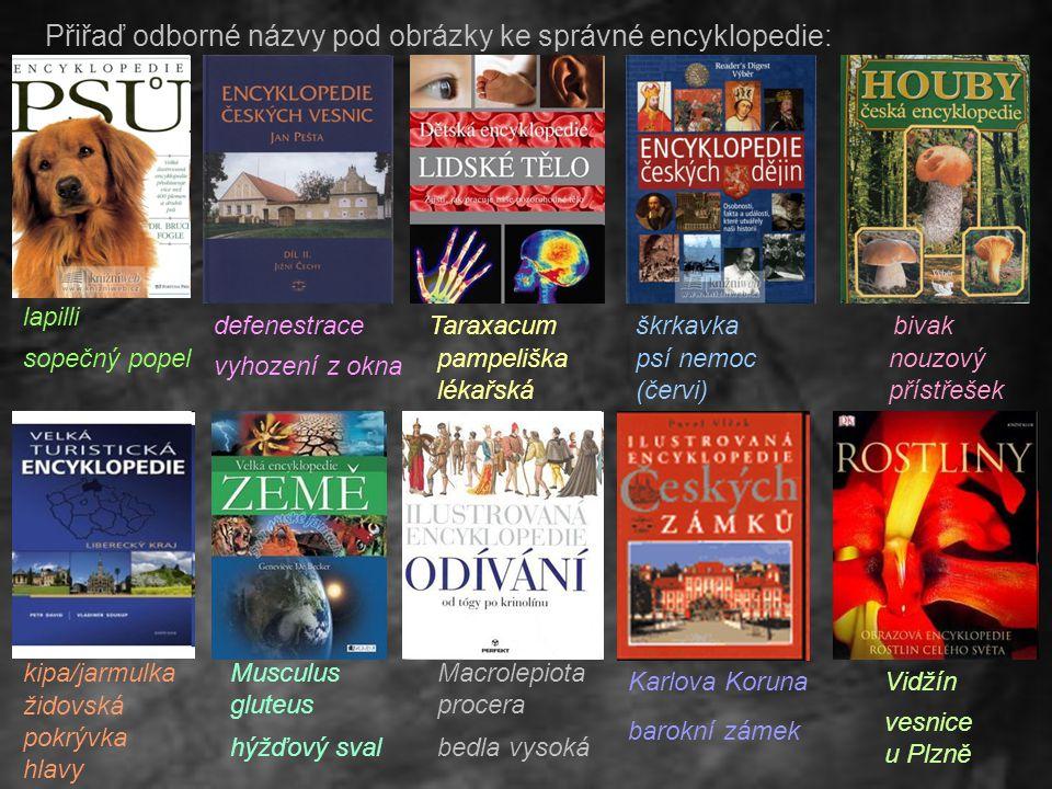 Přiřaď odborné názvy pod obrázky ke správné encyklopedie: