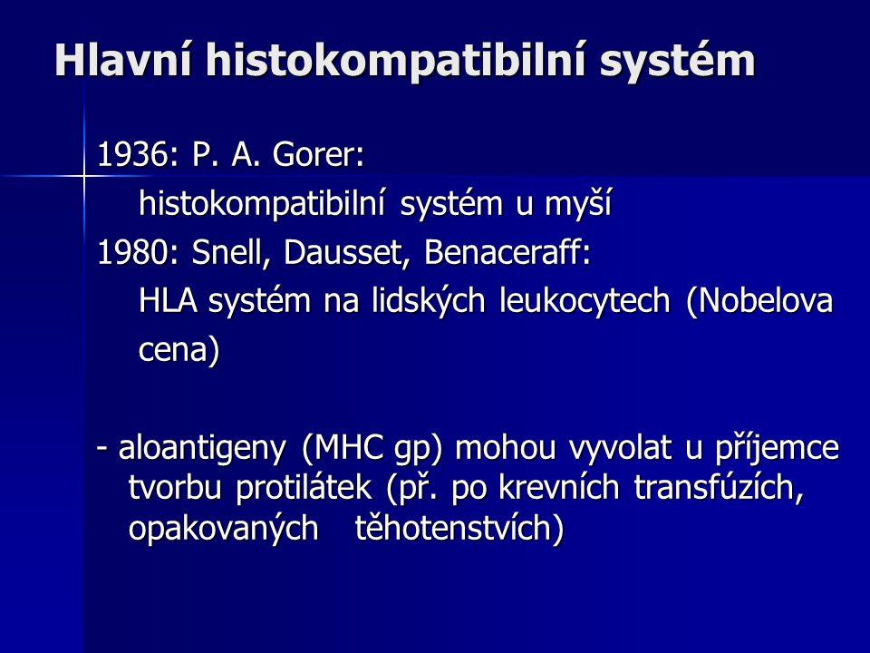 Hlavní histokompatibilní systém