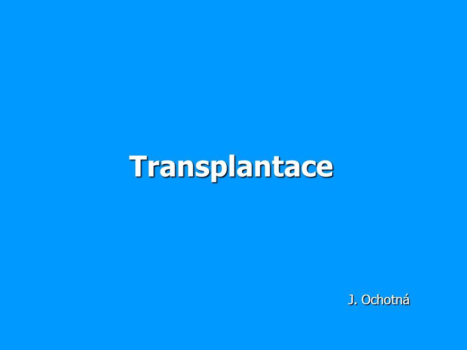 Transplantace J. Ochotná