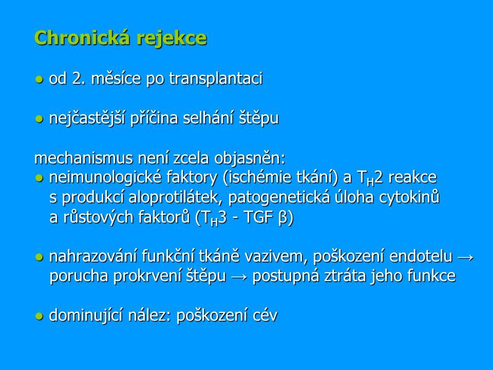 Chronická rejekce ● od 2.