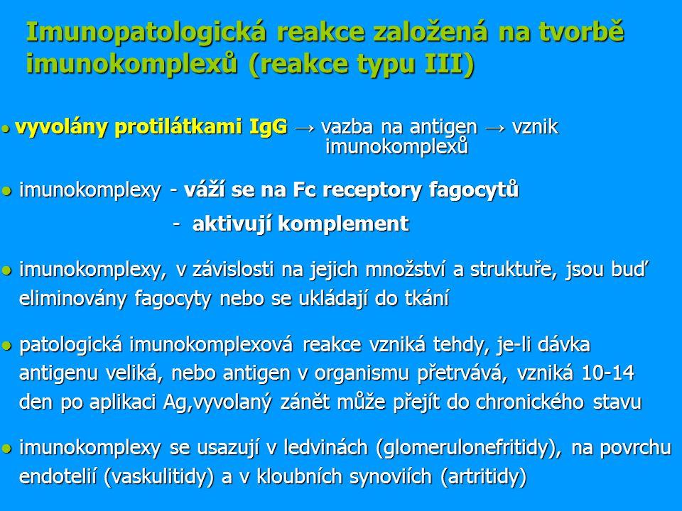 Imunopatologická reakce založená na tvorbě imunokomplexů (reakce typu III)