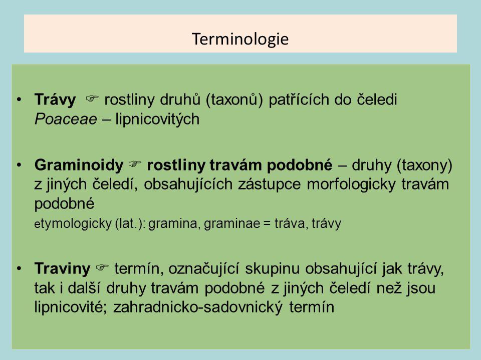 Terminologie Trávy  rostliny druhů (taxonů) patřících do čeledi Poaceae – lipnicovitých.