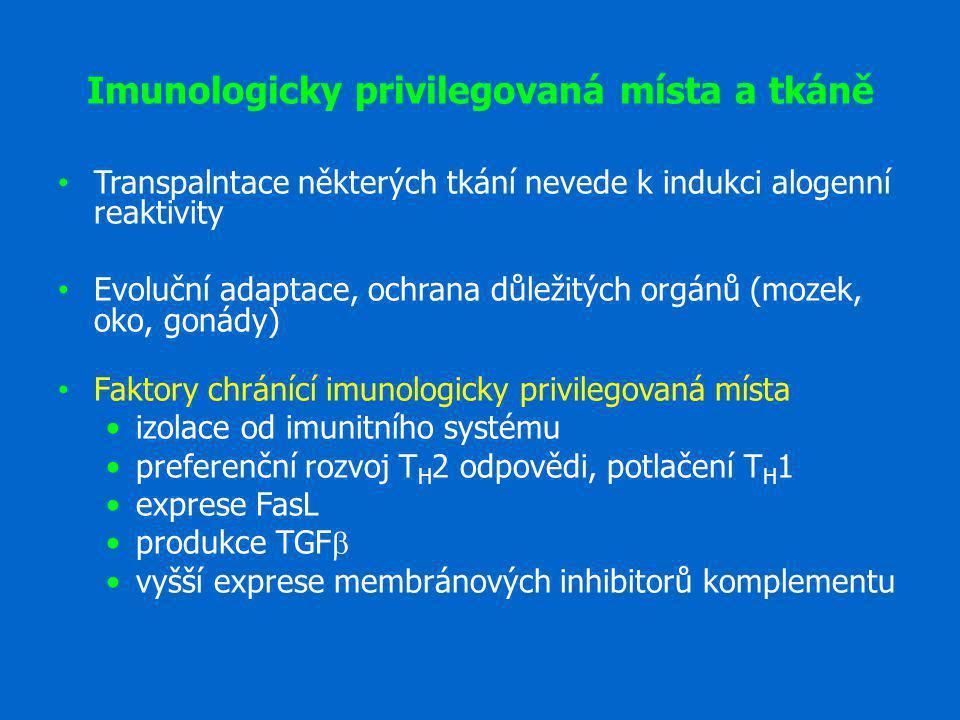Imunologicky privilegovaná místa a tkáně
