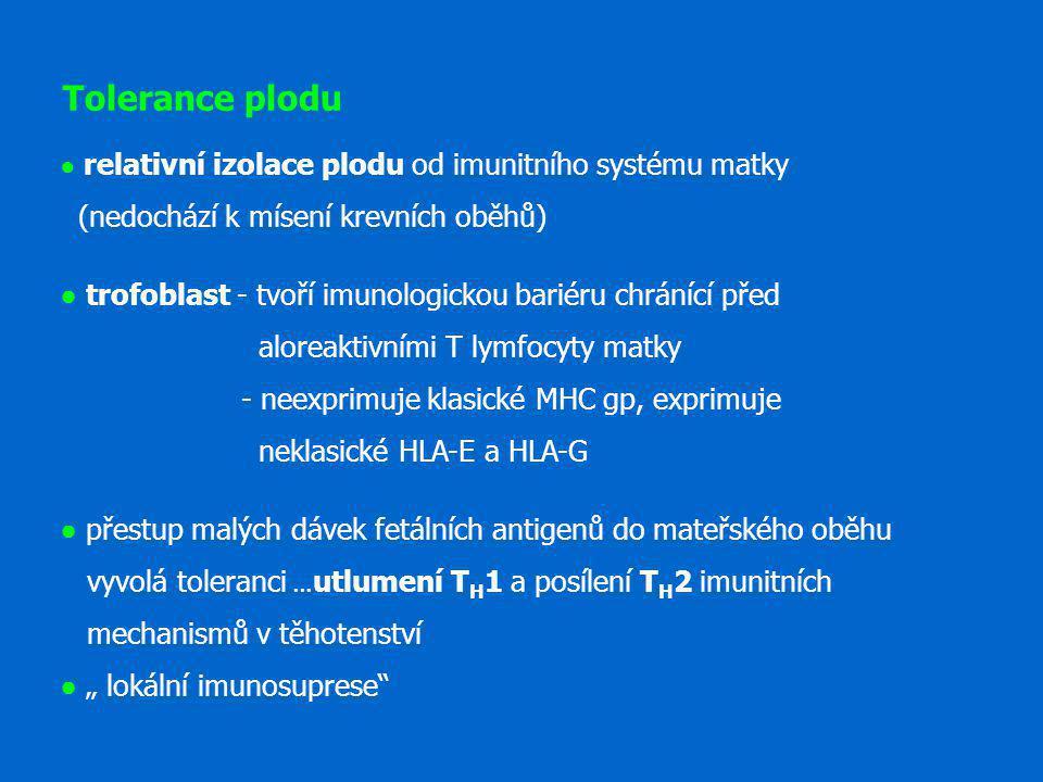 Tolerance plodu ● relativní izolace plodu od imunitního systému matky (nedochází k mísení krevních oběhů)
