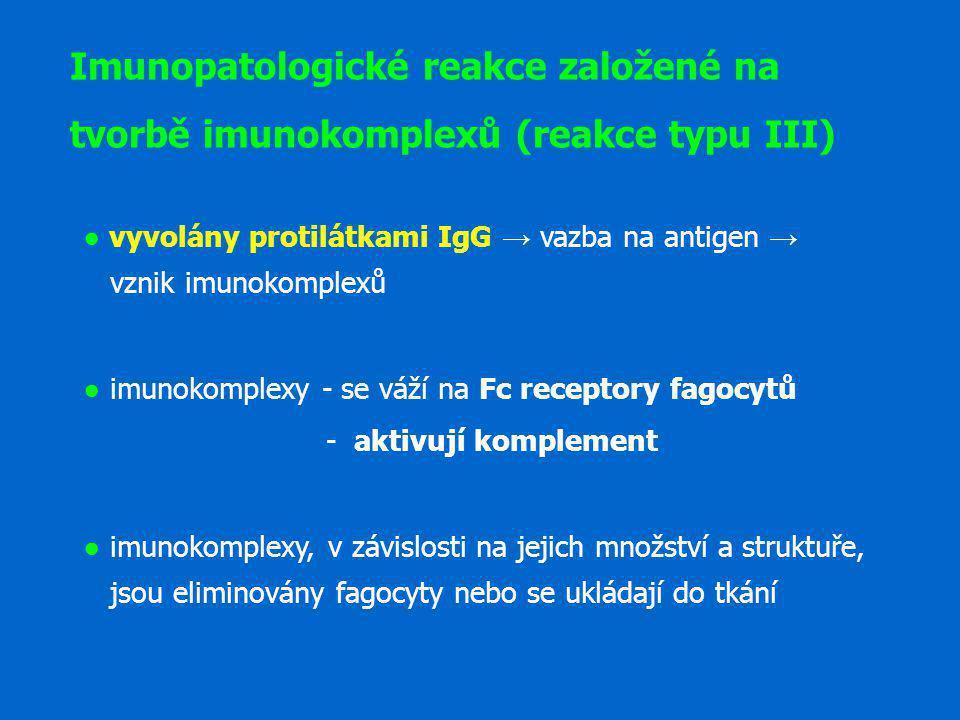 Imunopatologické reakce založené na tvorbě imunokomplexů (reakce typu III)