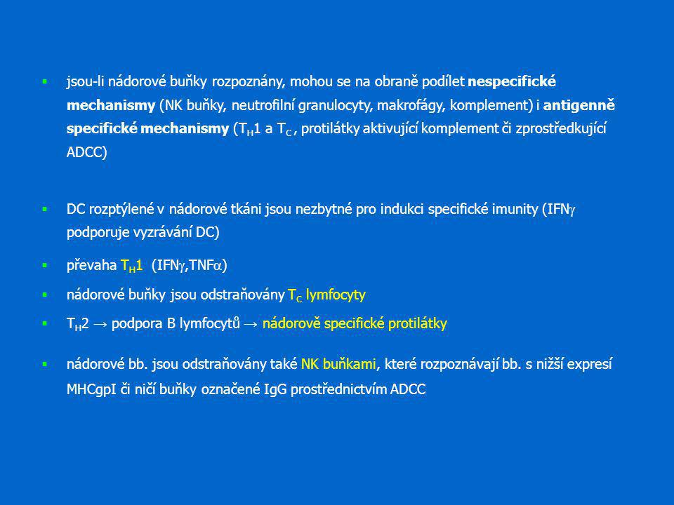 jsou-li nádorové buňky rozpoznány, mohou se na obraně podílet nespecifické mechanismy (NK buňky, neutrofilní granulocyty, makrofágy, komplement) i antigenně specifické mechanismy (TH1 a TC , protilátky aktivující komplement či zprostředkující ADCC)