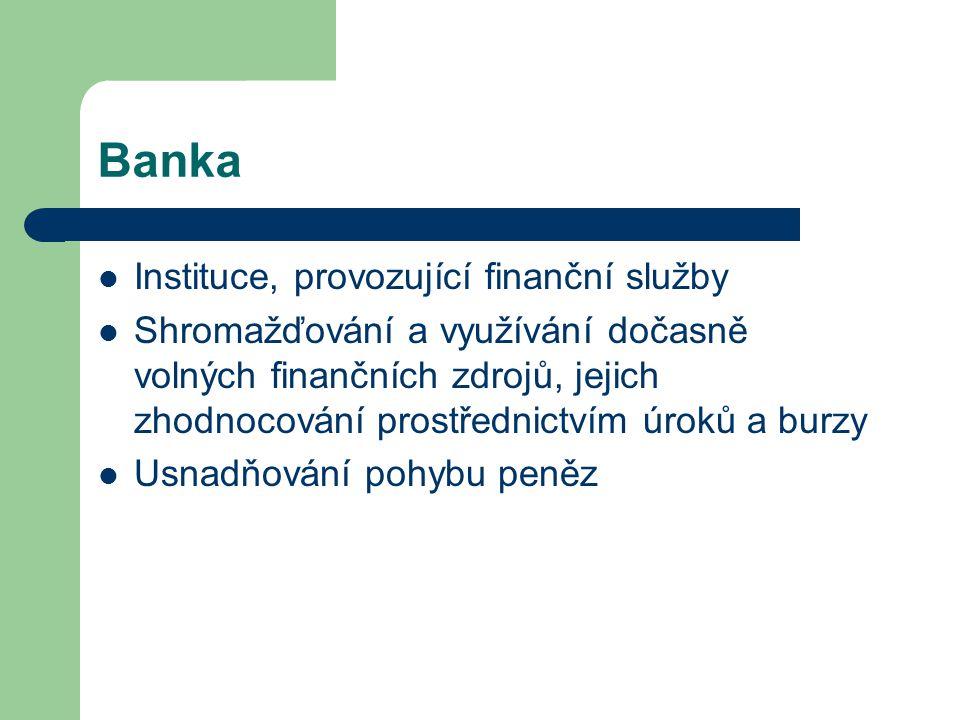 Banka Instituce, provozující finanční služby