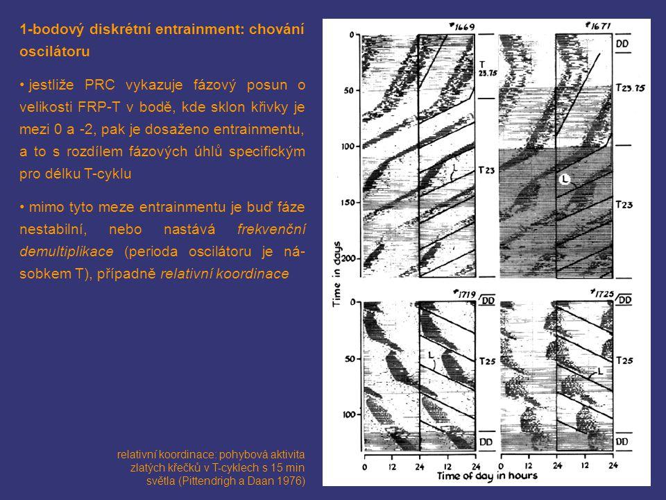 1-bodový diskrétní entrainment: chování oscilátoru