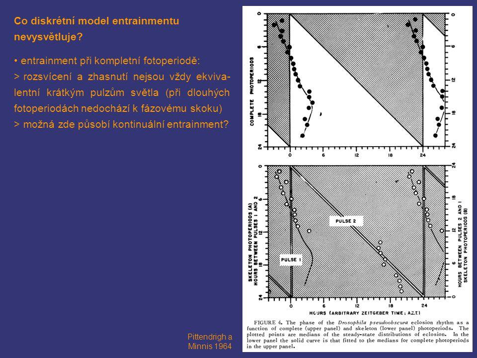 Co diskrétní model entrainmentu nevysvětluje