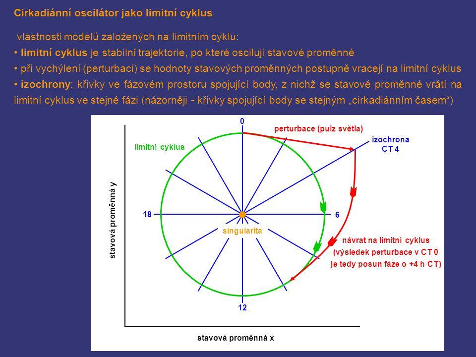 Cirkadiánní oscilátor jako limitní cyklus