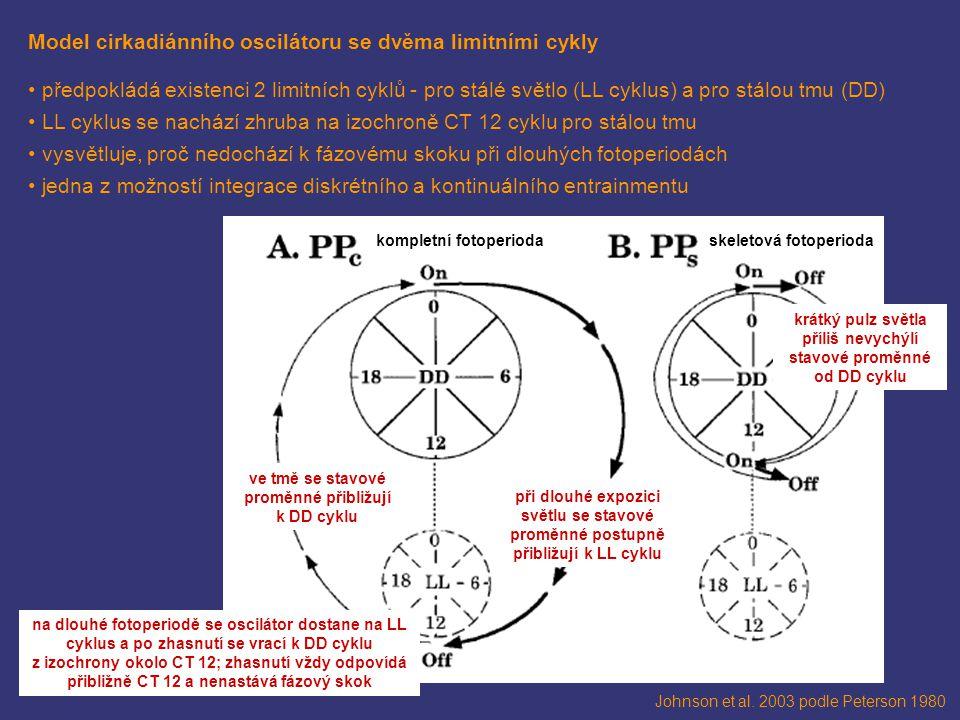 krátký pulz světla příliš nevychýlí stavové proměnné od DD cyklu
