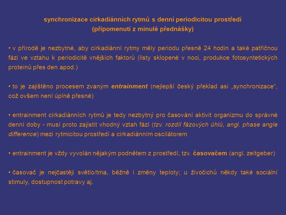 synchronizace cirkadiánních rytmů s denní periodicitou prostředí