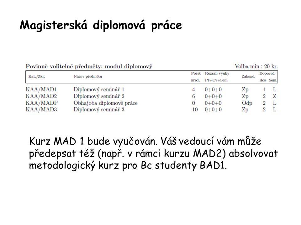 Magisterská diplomová práce