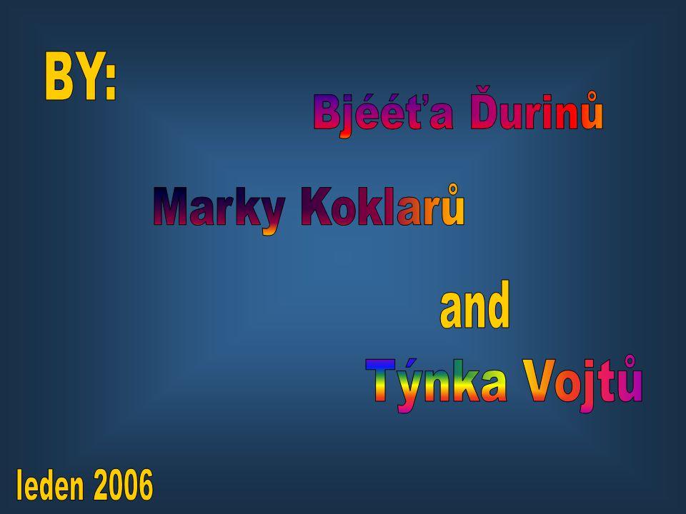 BY: Bjééťa Ďurinů Marky Koklarů and Týnka Vojtů leden 2006