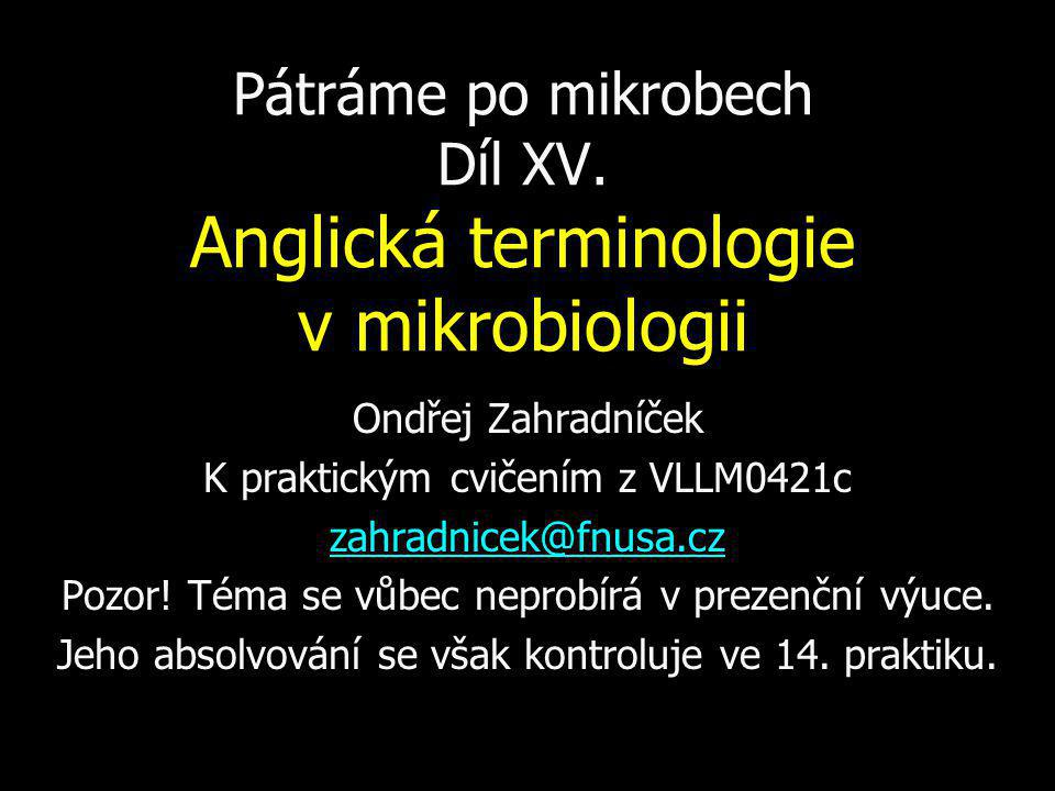 Pátráme po mikrobech Díl XV. Anglická terminologie v mikrobiologii