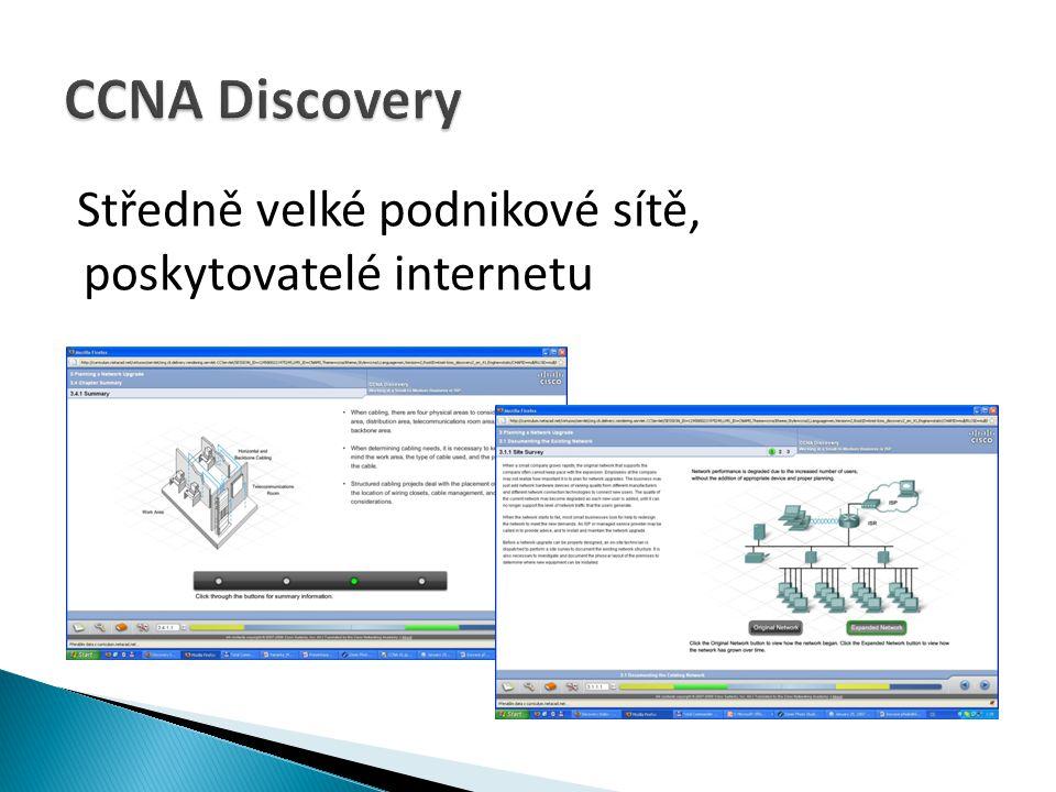 CCNA Discovery Středně velké podnikové sítě, poskytovatelé internetu