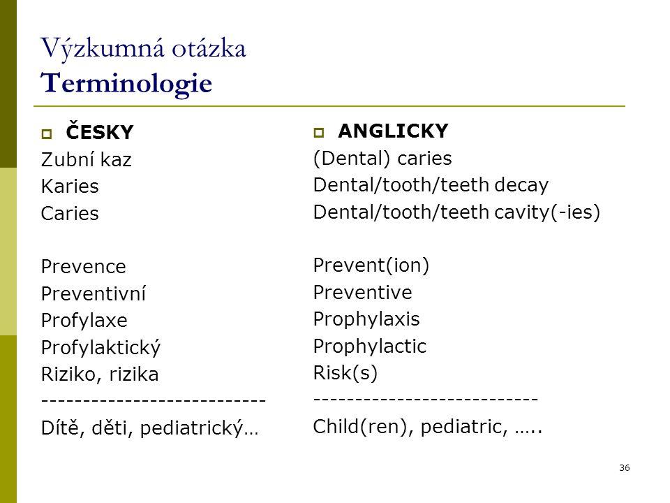 Výzkumná otázka Terminologie