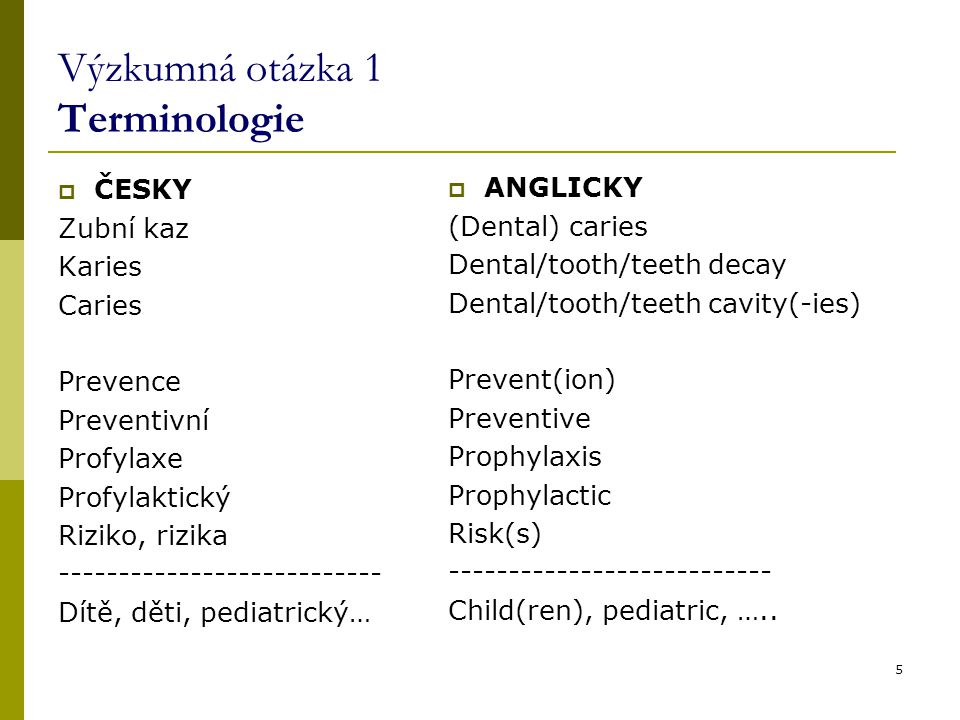 Výzkumná otázka 1 Terminologie