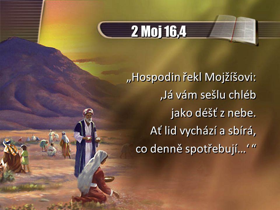 """2 Moj 16,4 """"Hospodin řekl Mojžíšovi: 'Já vám sešlu chléb"""