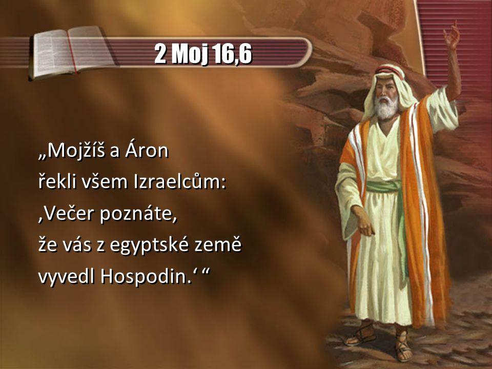 """2 Moj 16,6 """"Mojžíš a Áron řekli všem Izraelcům: 'Večer poznáte,"""