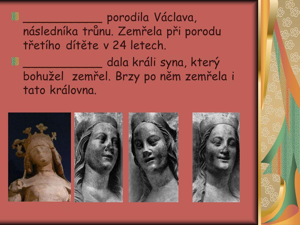 ___________ porodila Václava, následníka trůnu