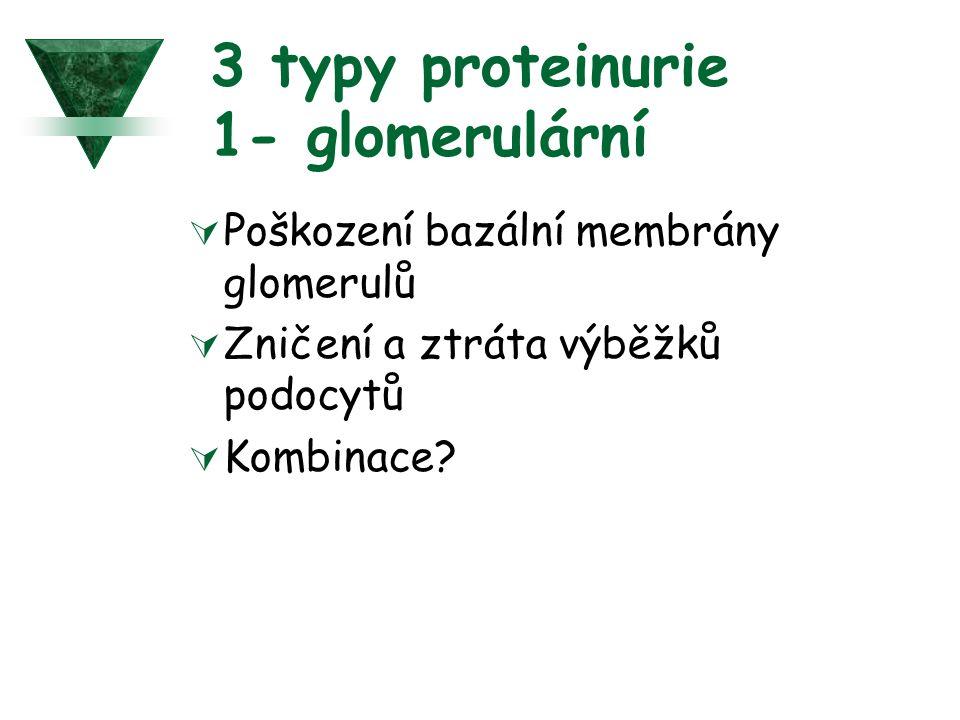 3 typy proteinurie 1- glomerulární