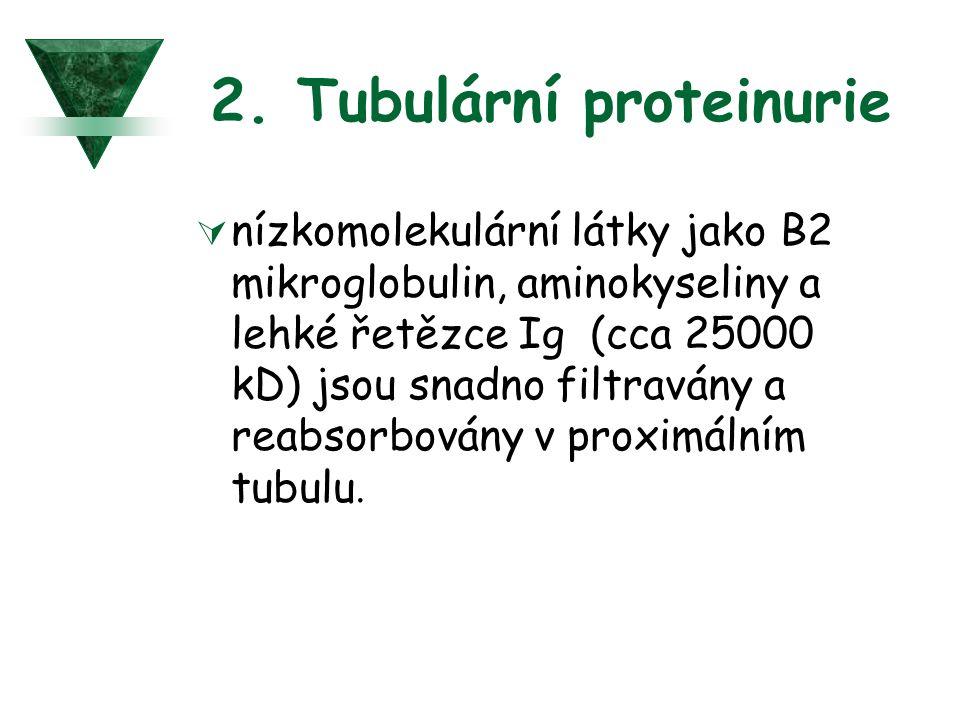 2. Tubulární proteinurie
