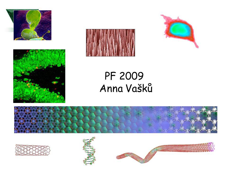 PF 2009 Anna Vašků
