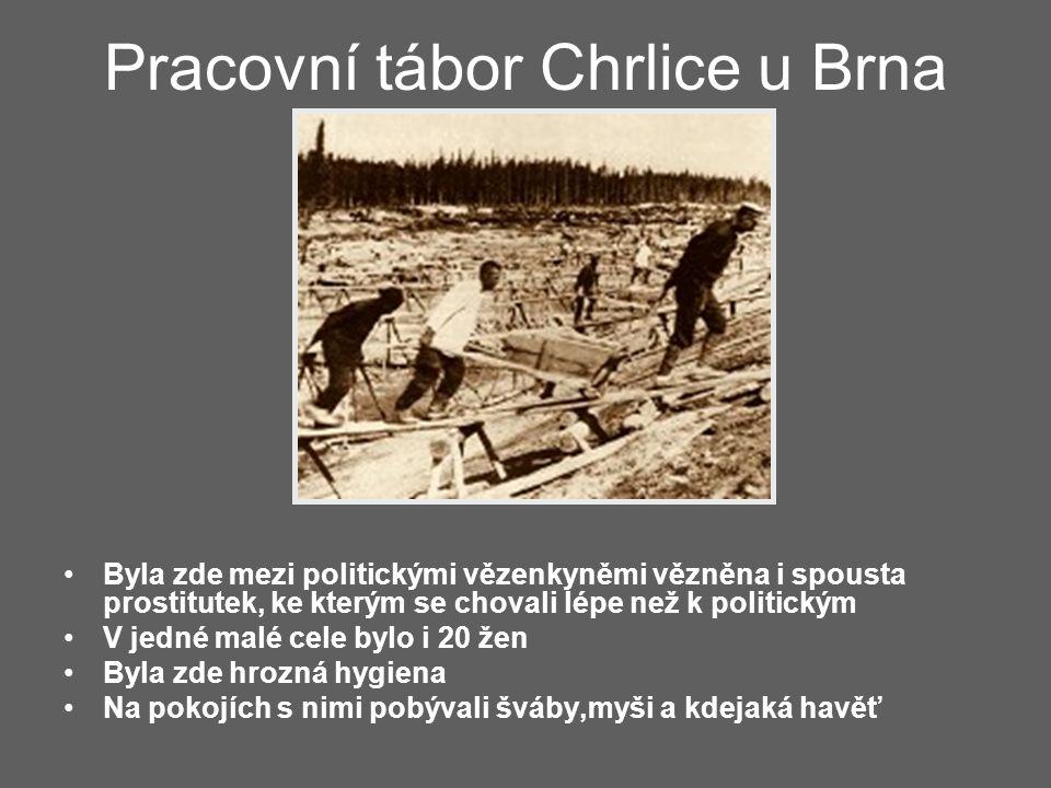 Pracovní tábor Chrlice u Brna
