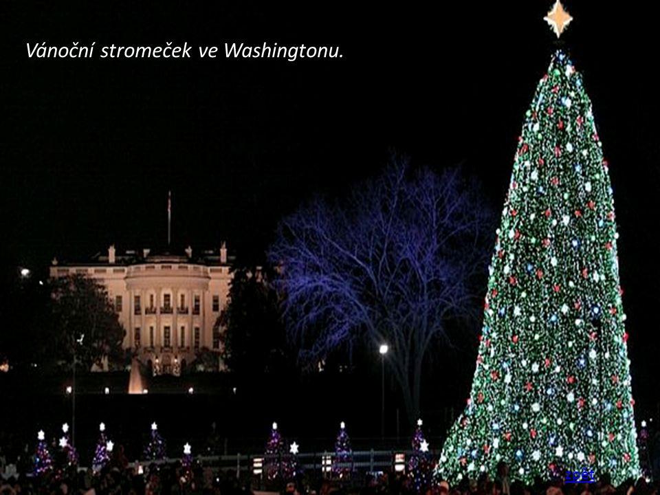 Vánoční stromeček ve Washingtonu.