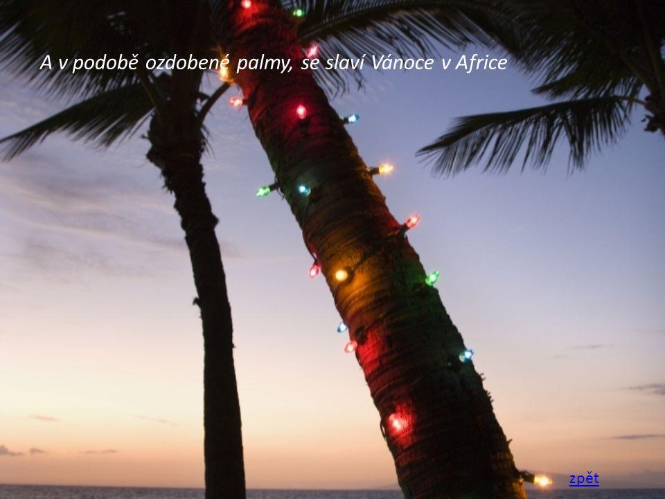 A v podobě ozdobené palmy, se slaví Vánoce v Africe