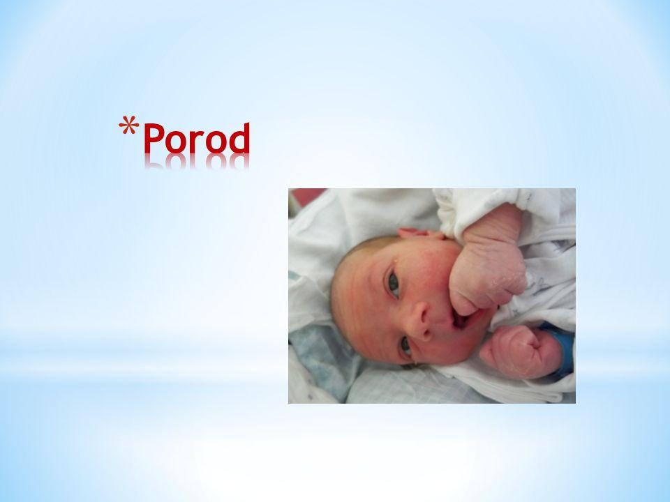Porod