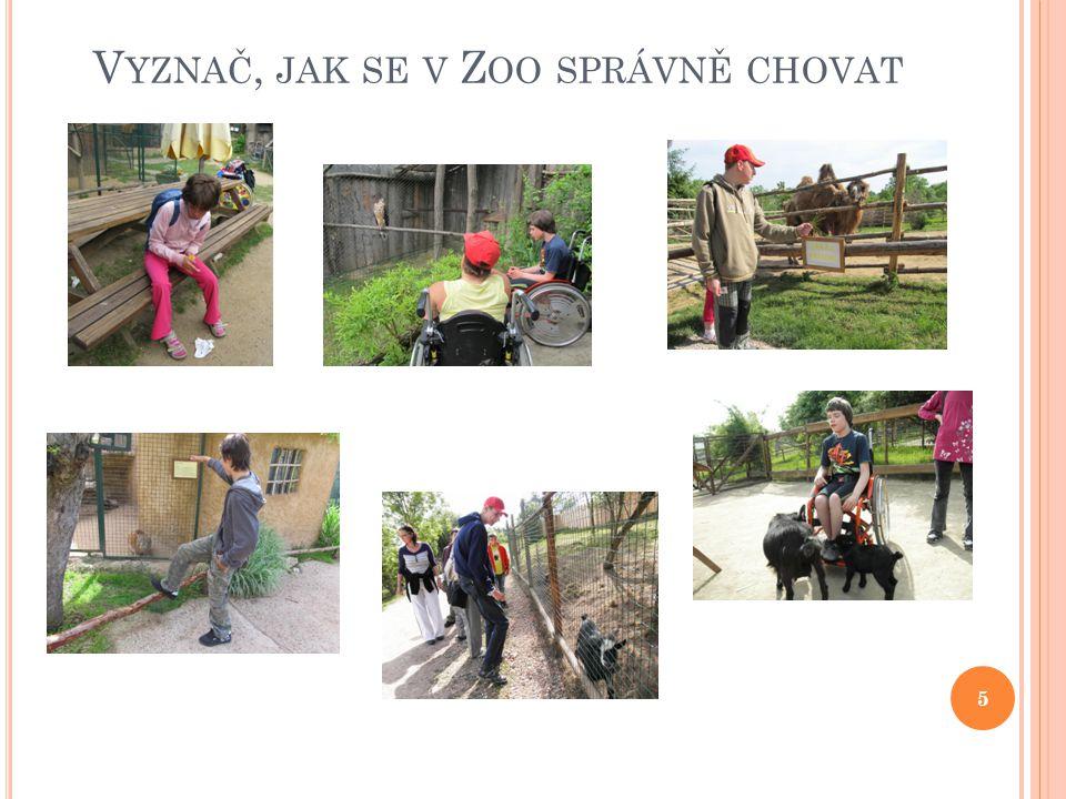 Vyznač, jak se v Zoo správně chovat