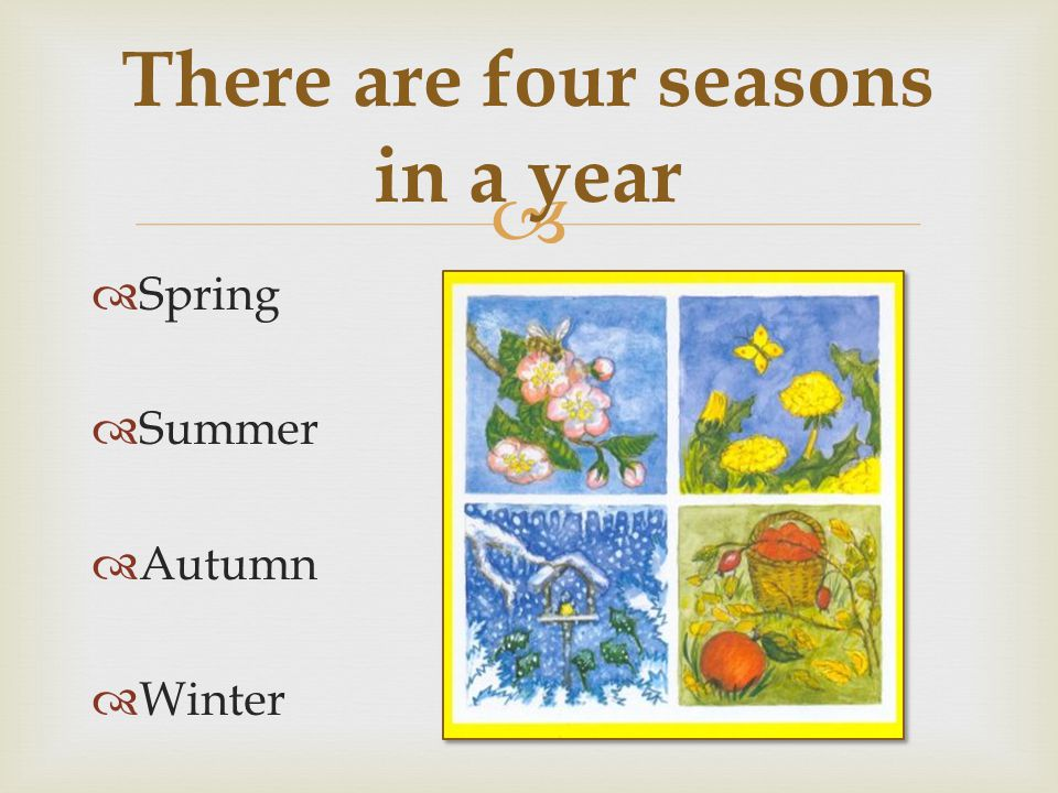 There are four seasons in a year