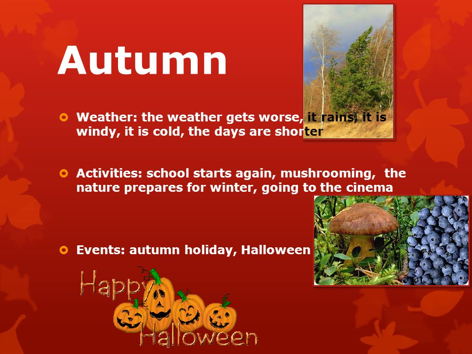 Autumn Weather: the weather gets worse, it rains, it is windy, it is cold, the days are shorter.
