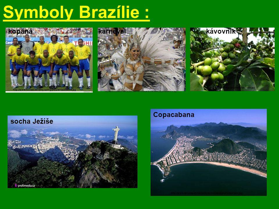 Symboly Brazílie : kopaná karneval kávovník Copacabana socha Ježíše