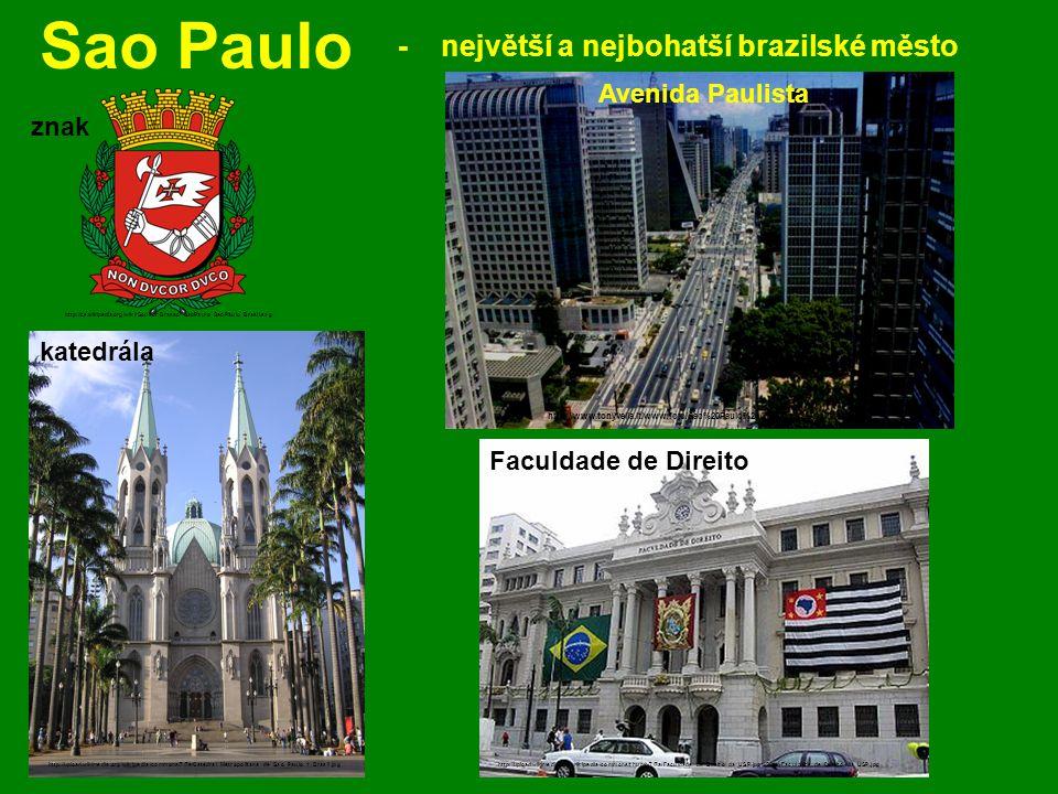 Sao Paulo - největší a nejbohatší brazilské město Avenida Paulista