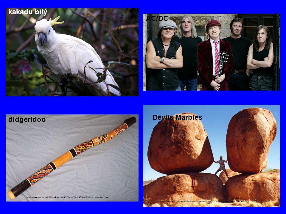 kakadu bílý AC/DC Devils Marbles didgeridoo