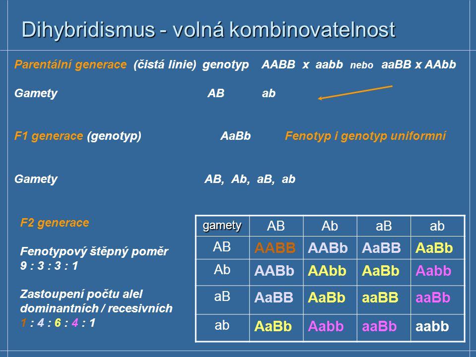 Dihybridismus - volná kombinovatelnost