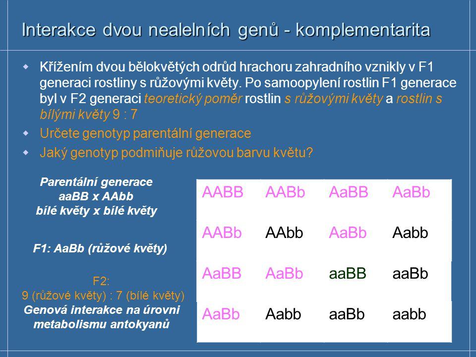 Interakce dvou nealelních genů - komplementarita