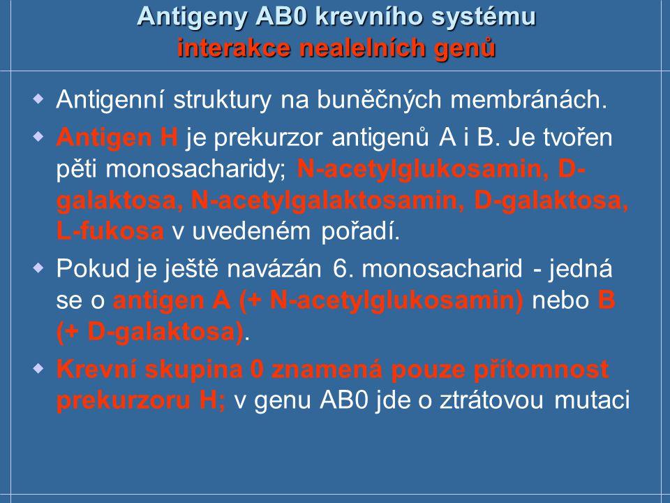Antigeny AB0 krevního systému interakce nealelních genů