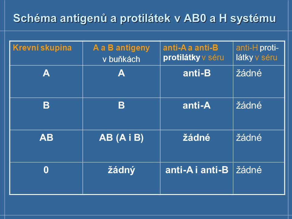 Schéma antigenů a protilátek v AB0 a H systému
